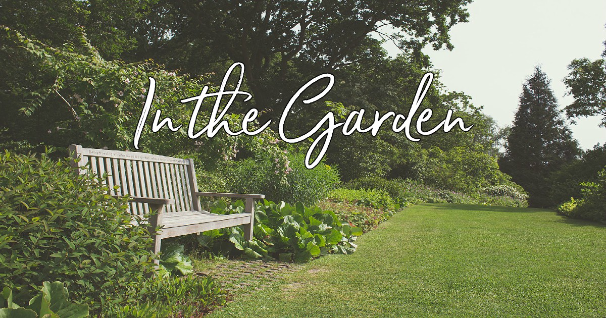 In The Garden Lyrics Hymn Meaning And Story