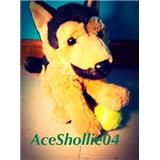 aceshollie04