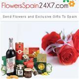 flowersspain24x7