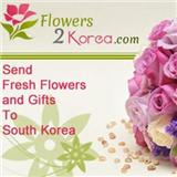 koreaflower